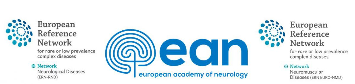 "3 November 2020 | ERN-RND webinar ""Non-invasive stimulation for ataxias"""